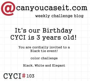 CYCI103-a-300x272