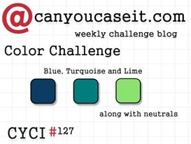 Can You Case It? CYCI #127