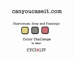 Can You Case It CYCI#137