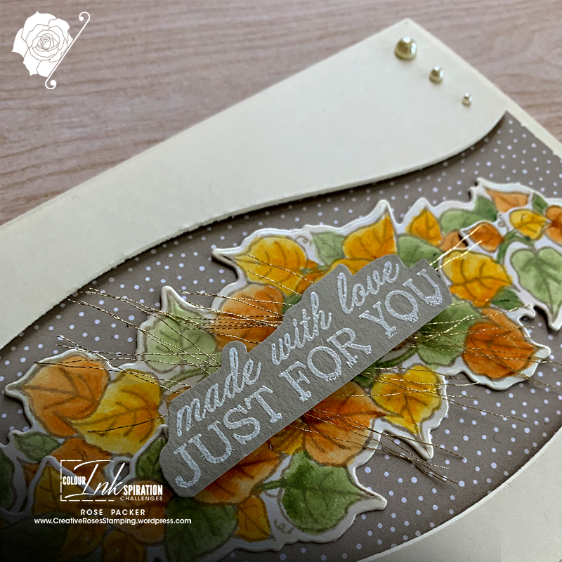 Rose Packer, Creative Roses, Stampin' Up!, Quite Curvy, Curvy dies